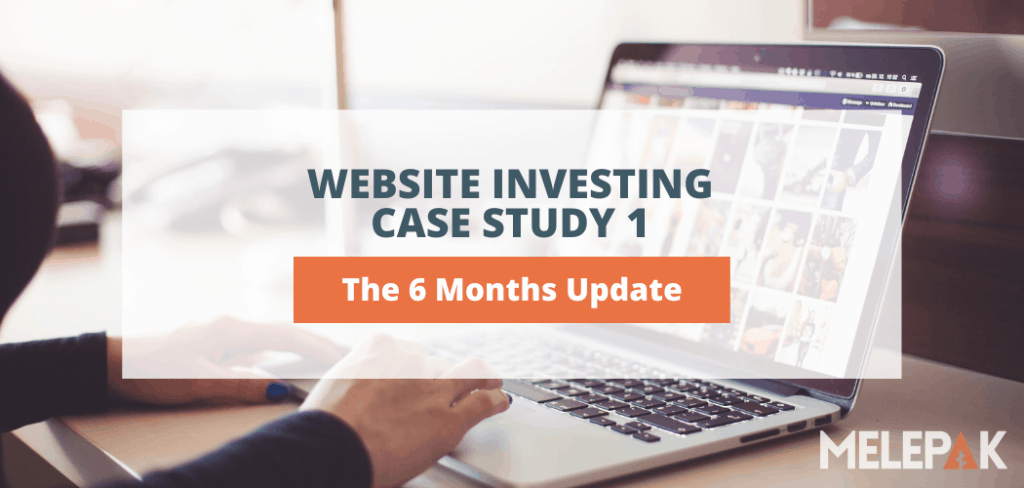 Website Investing 6 months Update